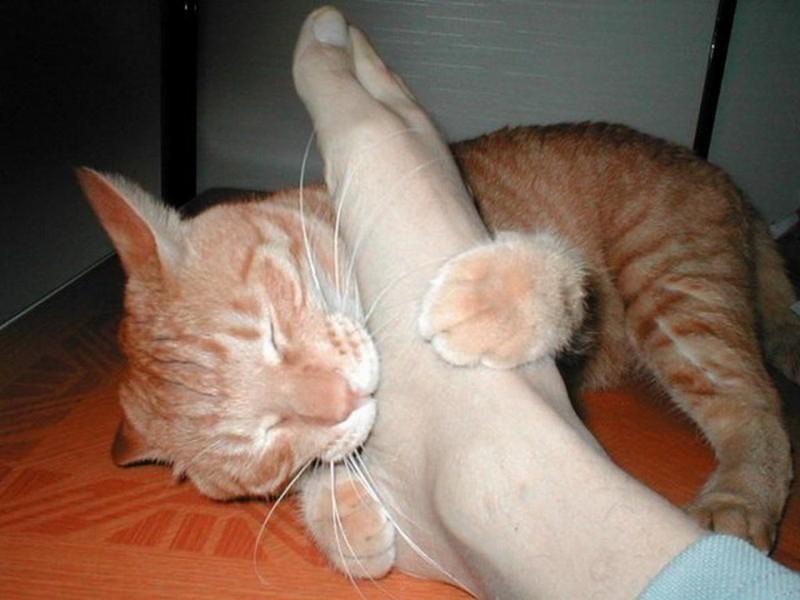 К чему снится когда тебе делают массаж